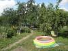 Сад летом
